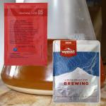 Shop Beer Brewing Yeast at NorCal Brewing Solutions