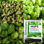 Shop Beer Brewing Hops at NorCal Brewing Solutions